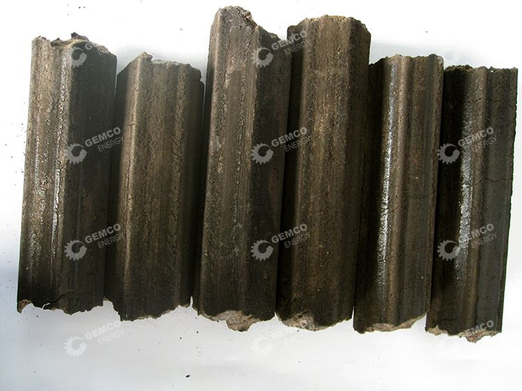 Briquettes Made from Bagasse