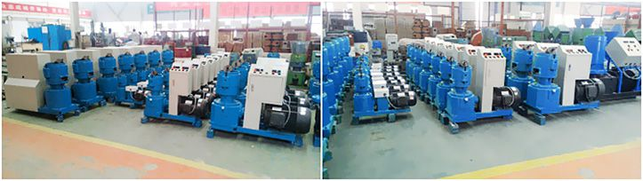 Biomas Pellet Machine Manufacturer