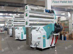 Cattle Feed Mill Making Feed Pellets for Dairy & Beef Cattle