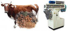 Why Choose Cattle Feed Pellet Mill