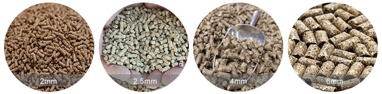 Different Animal Feed Pellets