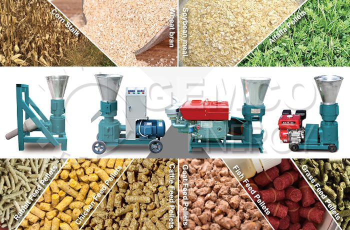 Professional Fodder Pellet Mill for Enriching Animal Nutrition