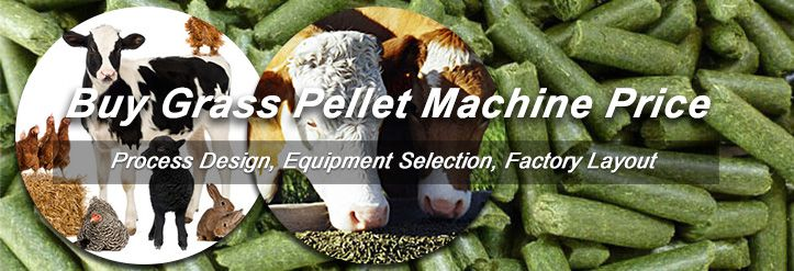 Grass Pellets for Livestock Poultry