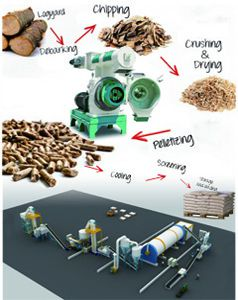 large pellet production line (ring die type)
