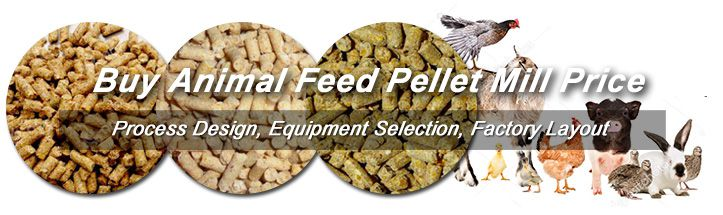Hot Sale GEMCO Feed Pellet Mill for Animals