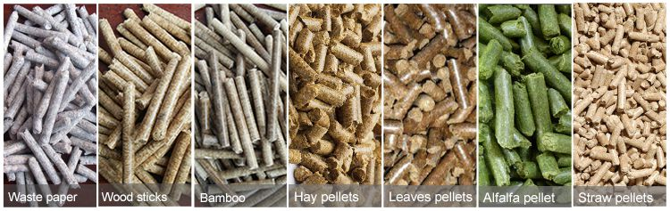 Make Pellets for Biomass Fuel and Animal Feed