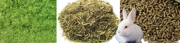 Rabbit Feed Pellets