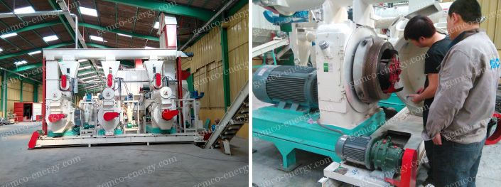 wood pellet mill commissioning