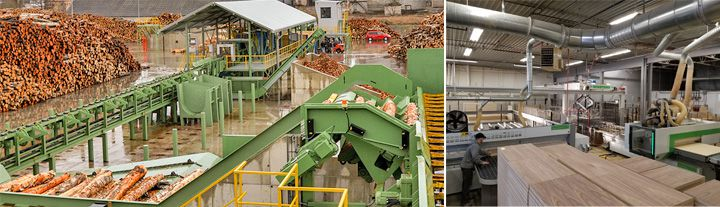 wood processing industry